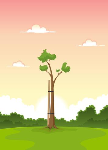 Spring Young Tree - Morning Of Life vector