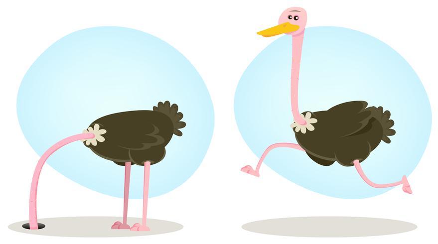 Avestruz corriendo y escondiendo la cabeza