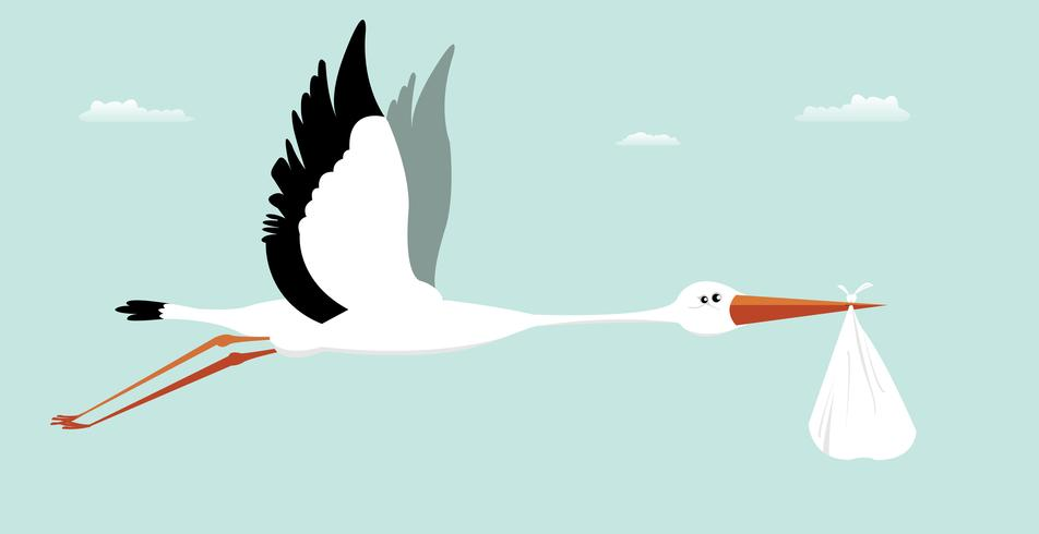 Stork Delivering Baby - It's A Boy vector