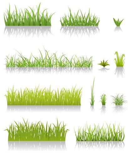 Ensemble d'herbe verte vecteur