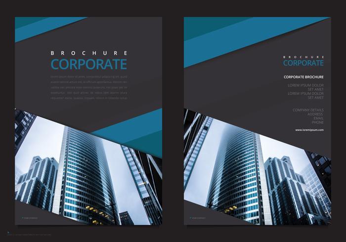 Professional Brochure Template. Business Marketing Flyer Template