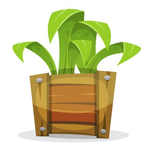 Plante verte drôle dans le seau en bois