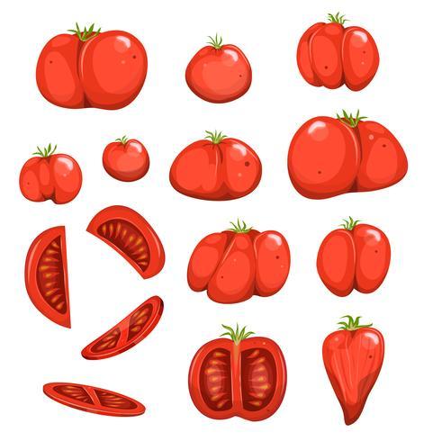 Rote Tomaten eingestellt