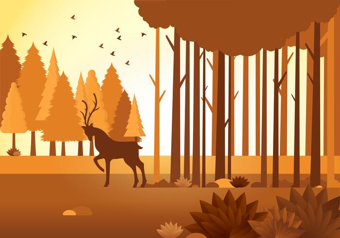Vector Autumn Landscape Illustration