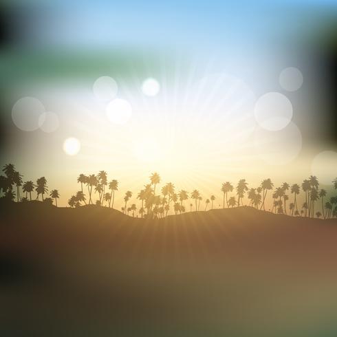 Silhuetter av palmer mot solnedgångshimmel