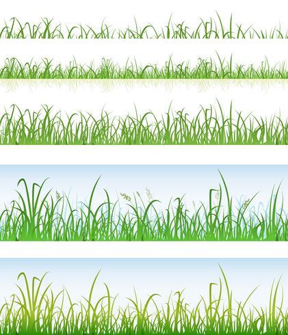 Strati di erba verde senza soluzione di continuità