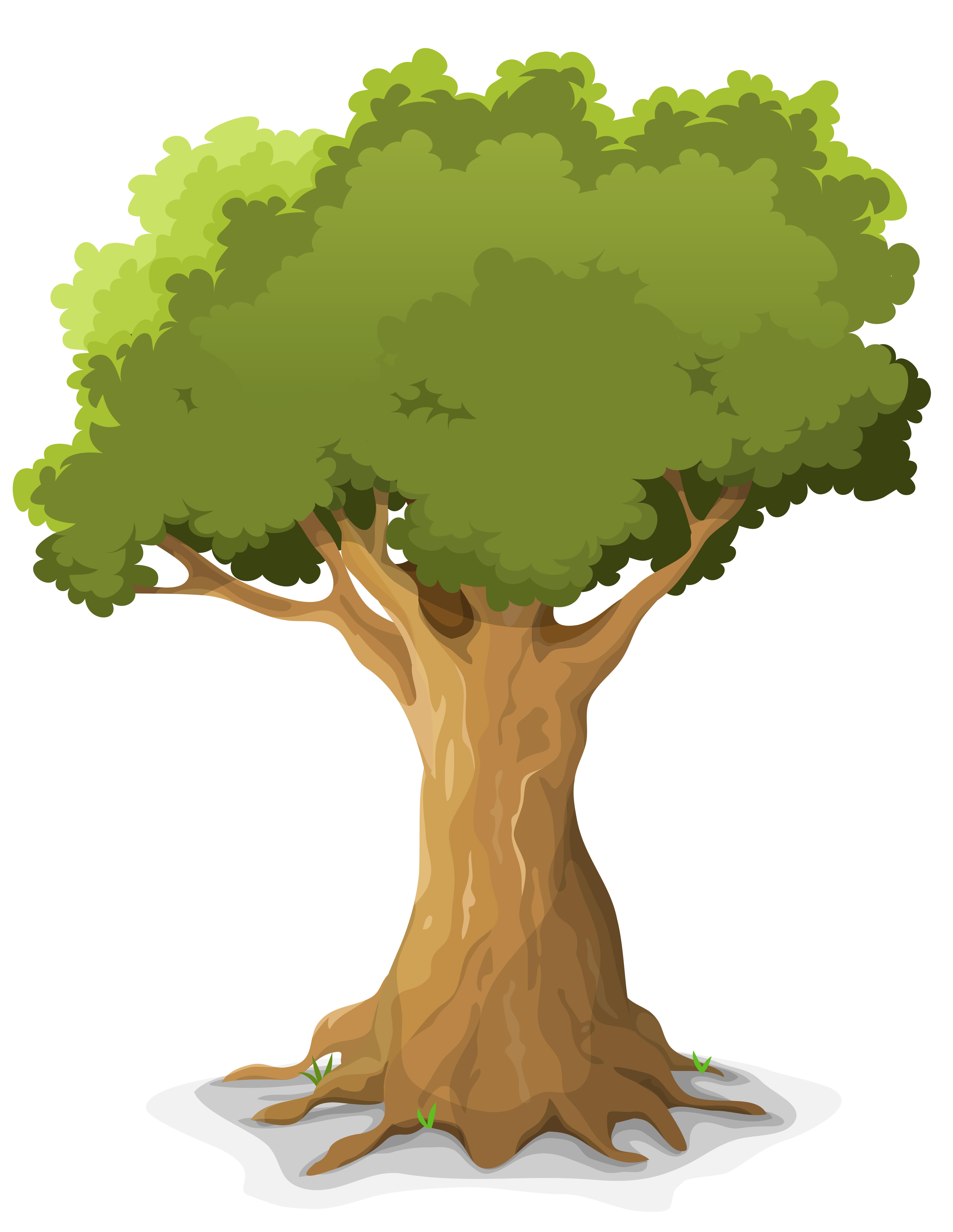 Oak Tree With Roots Sketch Spring Oak Tree - Down...