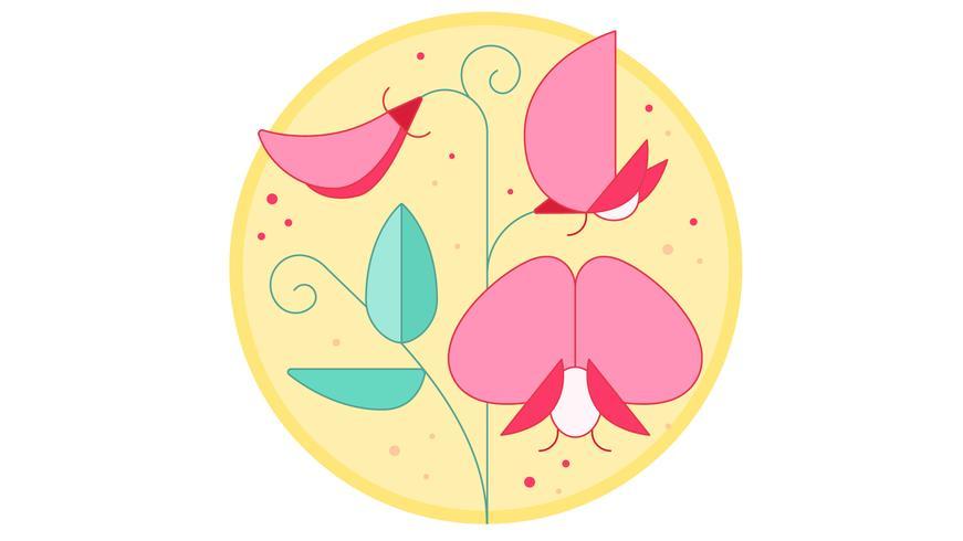 Vetor de orquídea