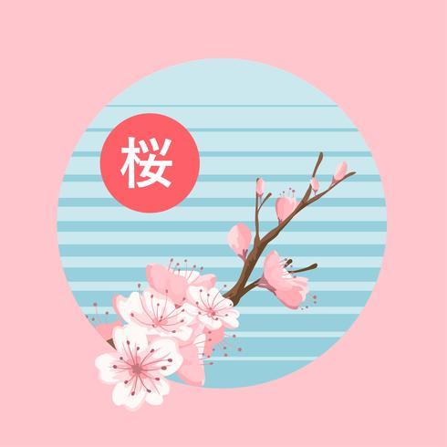 Kirschblüte blüht Vektor