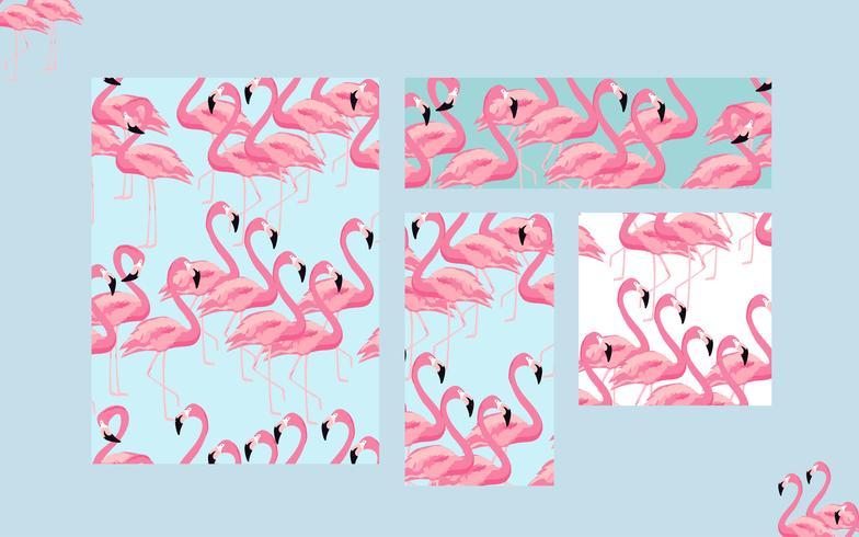 Sfondo di carte uccelli tropicali fenicottero