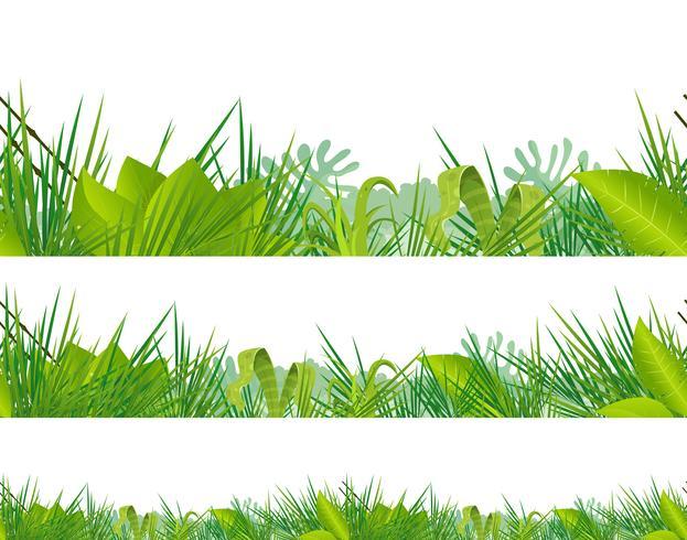 Selva sem costura e vegetação Tropical