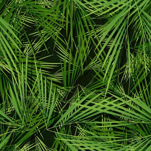 Seamless Palm Trees Wallpaper
