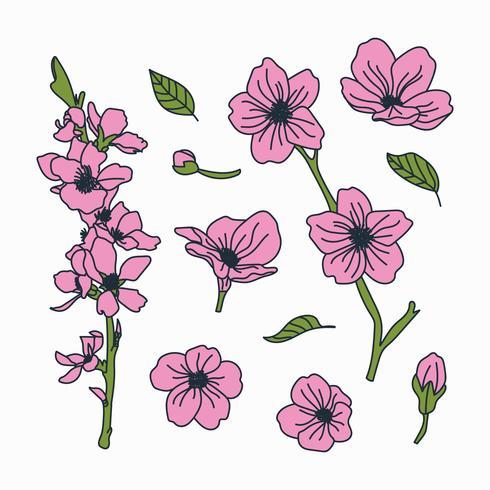 doodled botaniska körsbärsblommablommor