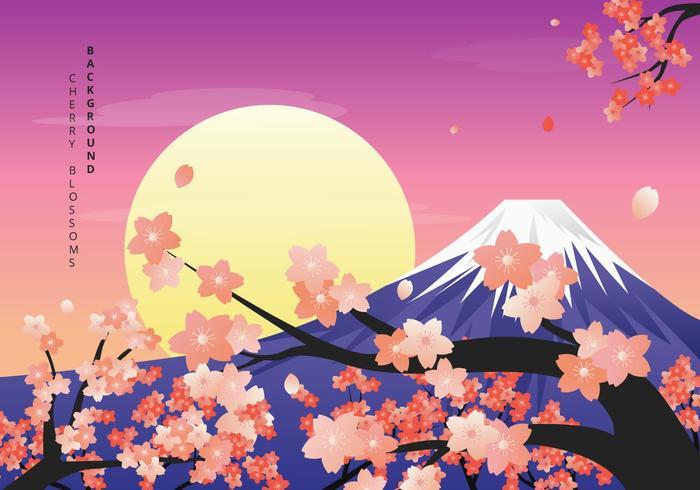 Cherry Blossoms Background Illustration