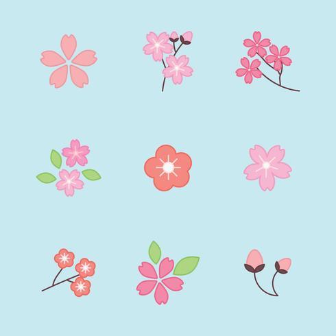 Set di fiori di ciliegio delineati