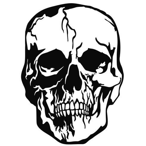 stemma del cranio del grunge