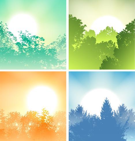 Cuatro amaneceres sobre árboles