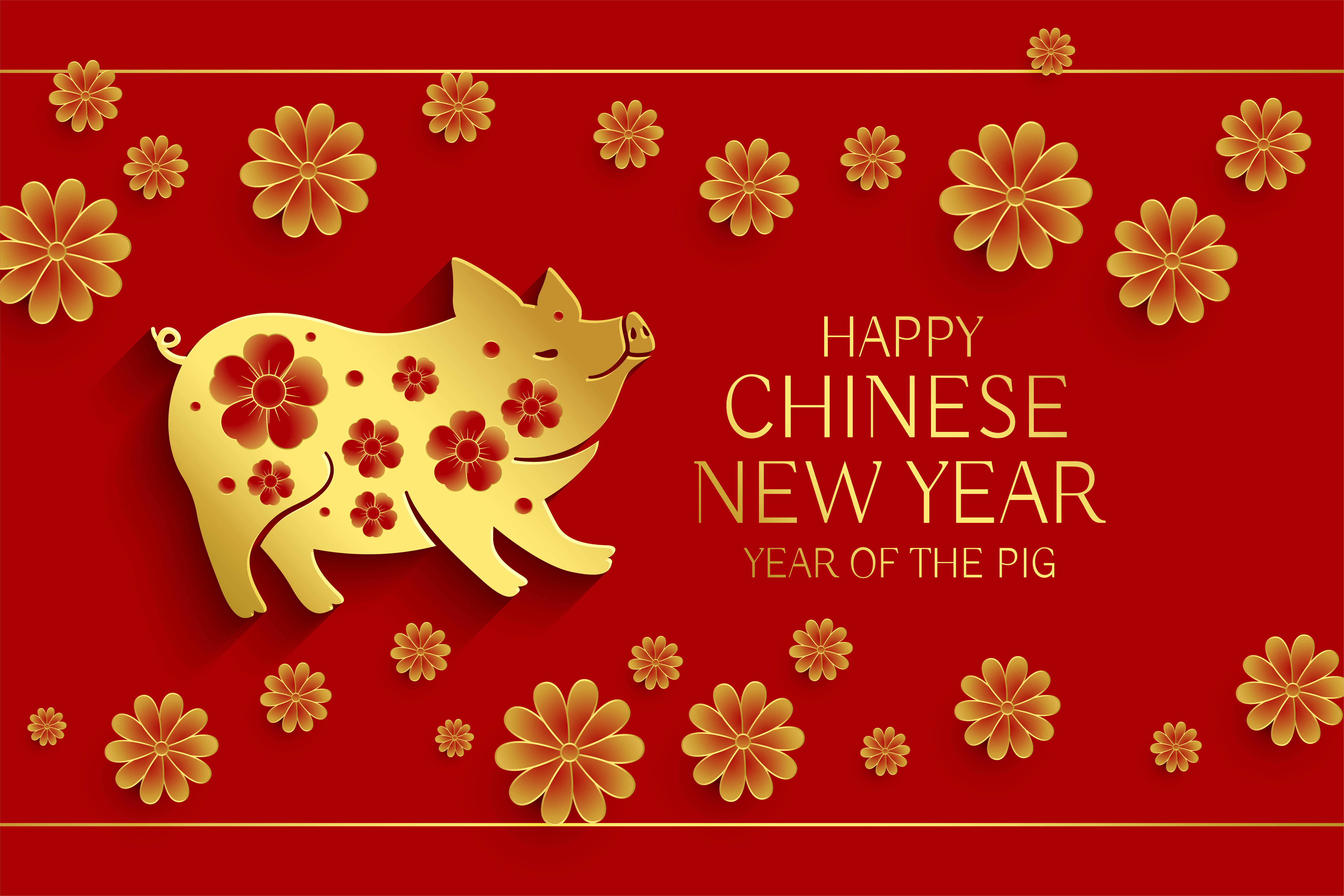 year of the pig chinese new year background - Download ...