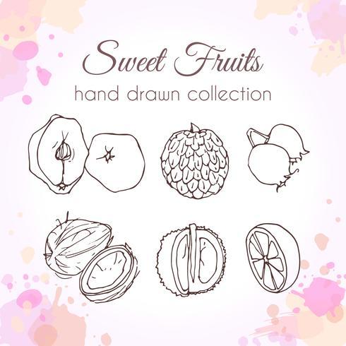Set di frutta fresca disegnata a mano vettore