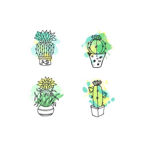 Hand getrokken succulente illustratie set vector