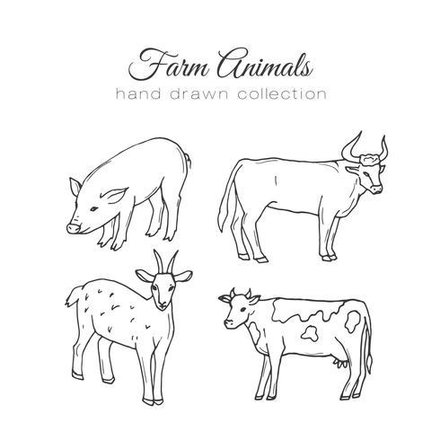 Animali da fattoria disegnati a mano vettore