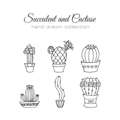 Set de suculentos y cactus dibujados a mano. vector
