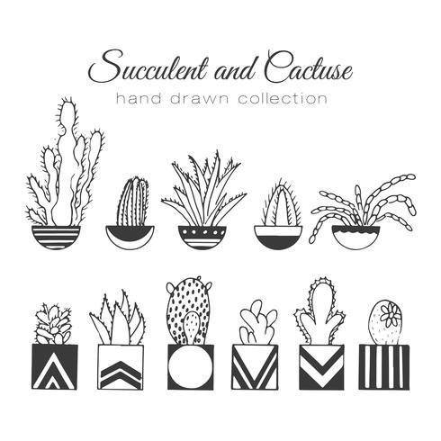 Hand getrokken succulent en cactussen ingesteld