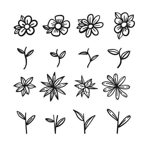 Schizzo disegnato a mano della parte di fiore vettore
