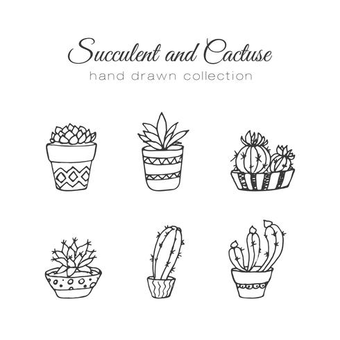 Ensemble de succulents et cactus dessinés à la main