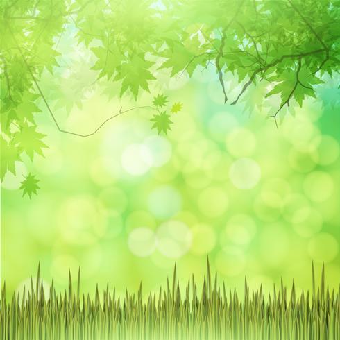 Sfondo verde naturale con erba vettoriale. vettore