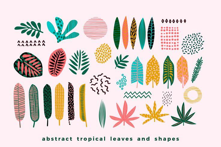 Conjunto de folhas tropicais abstratas. vetor