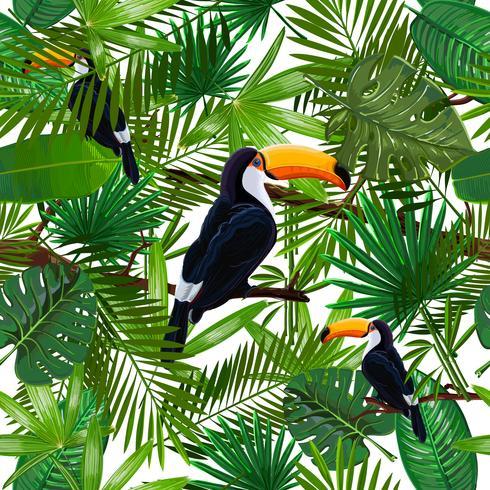 Vector el modelo inconsútil con las hojas y el tucán tropicales del pájaro en una rama en fondo transparente.