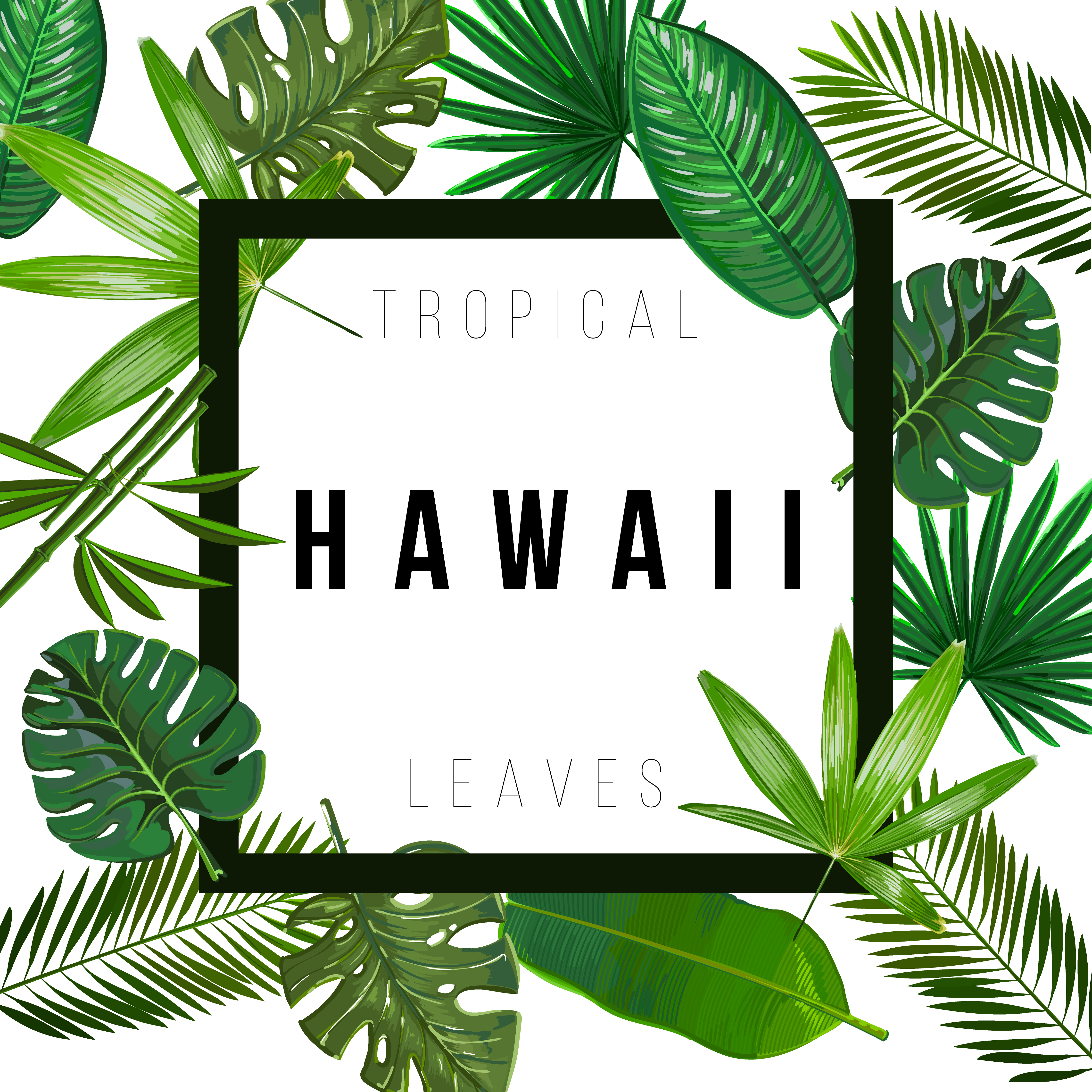 Tropical Leaves On White Background With Isolated Sign