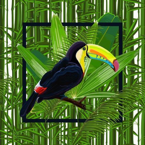 Vector de patrones sin fisuras con hojas tropicales y aves tucán