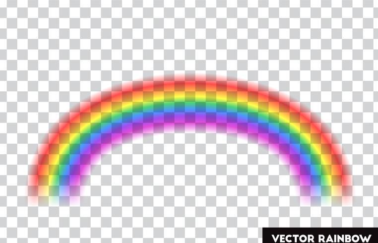 Transparent rainbow. Vector illustration. Realistic rainbow on transparent background.