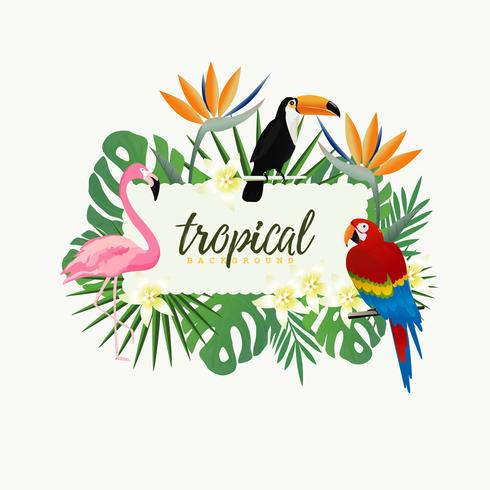 Tropical banner frame with parrot, toucan, flamingo and tropical leaves vector