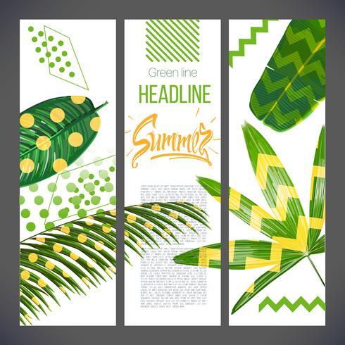 Pancartas con hojas tropicales y formas geométricas, naturaleza natural de palmeras zorro.