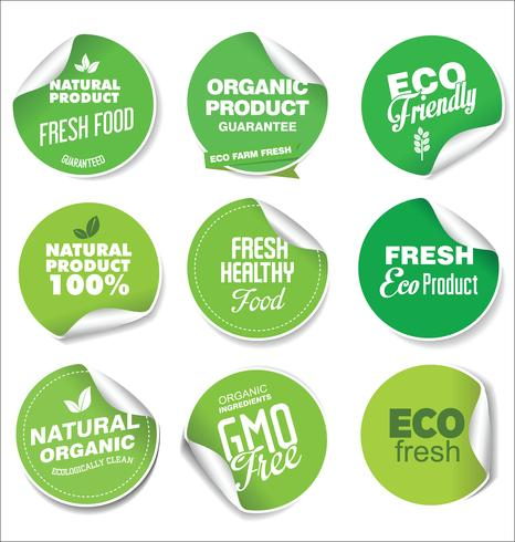 Collection of green labels and badges for organic and natural products vector