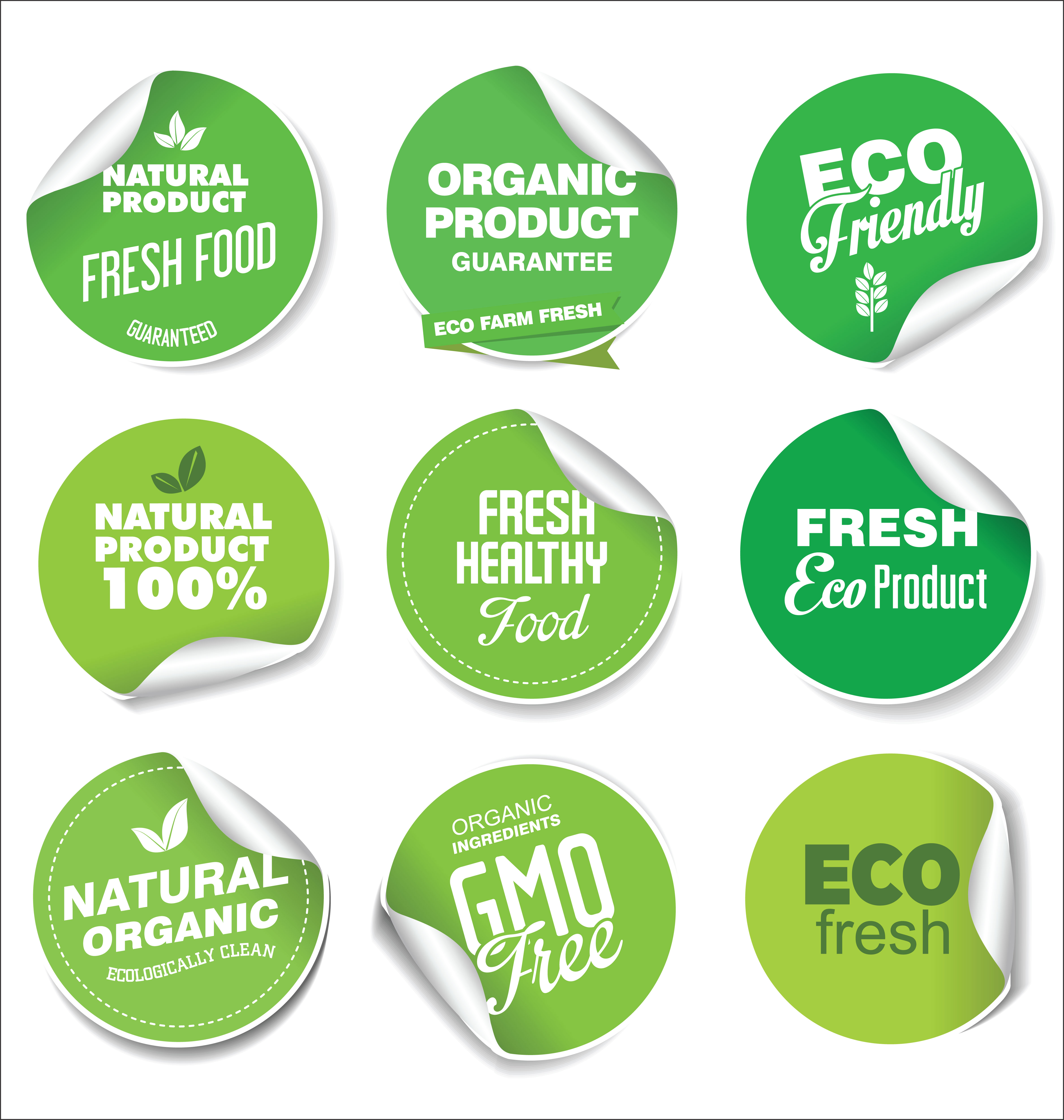 Collection Of Green Labels And Badges For Organic And