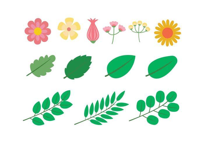 Ilustración de vector de conjunto de imágenes prediseñadas de flor