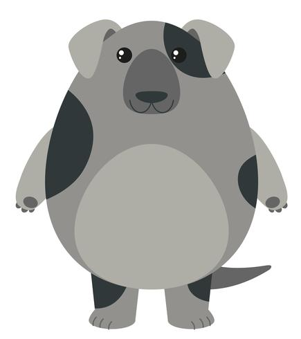 Grauer Hund auf weißem Hintergrund
