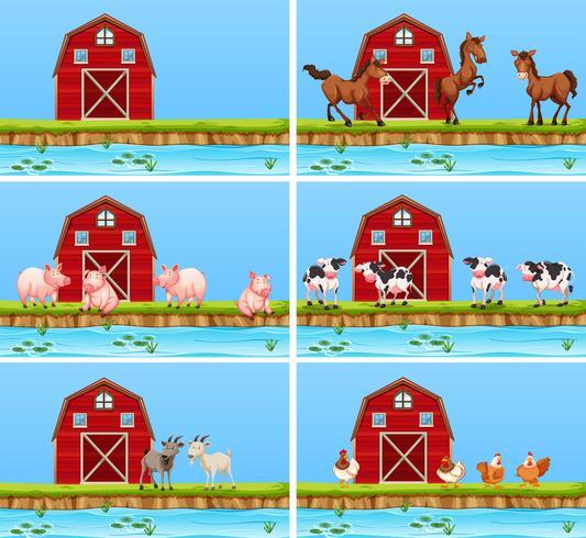 Conjunto de escenas de animales y de la granja.