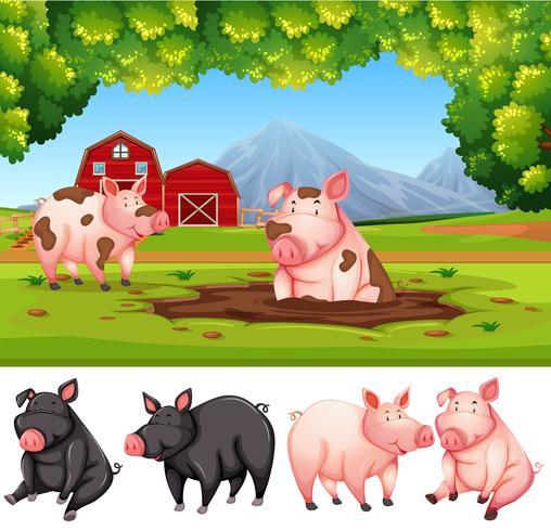 Granja de cerdos en la naturaleza