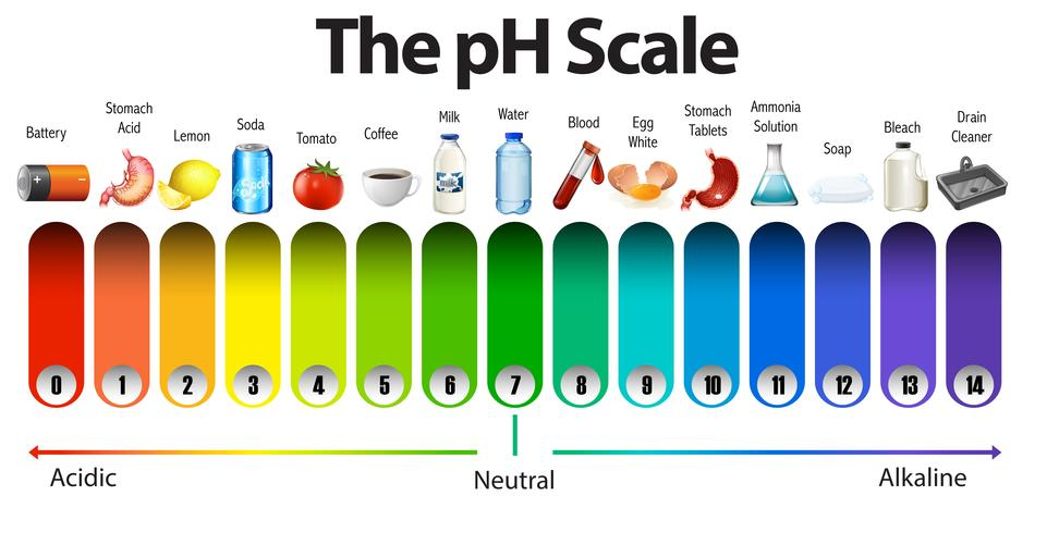 A pH scale on white background
