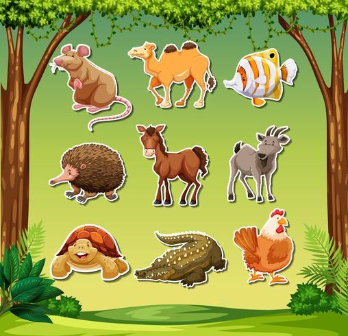 Veel dieren op jungle achtergrond