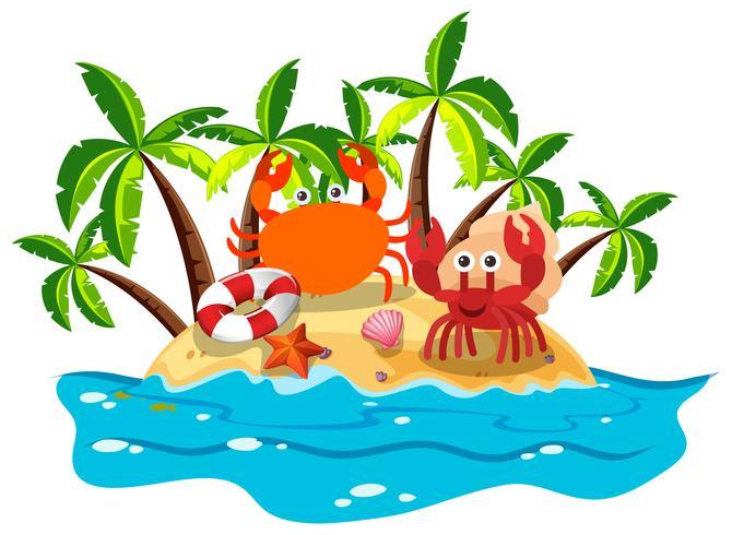 Krabben leben auf der Insel vektor