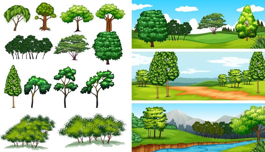 Naturszenen mit Bäumen und Feldern