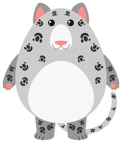 Luipaard met rond lichaam