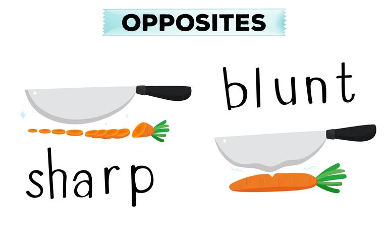 Opposite words for sharp and blunt