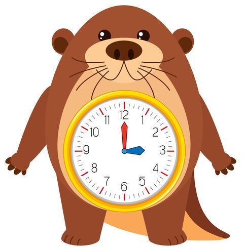 Relógio de lontra em fundo branco